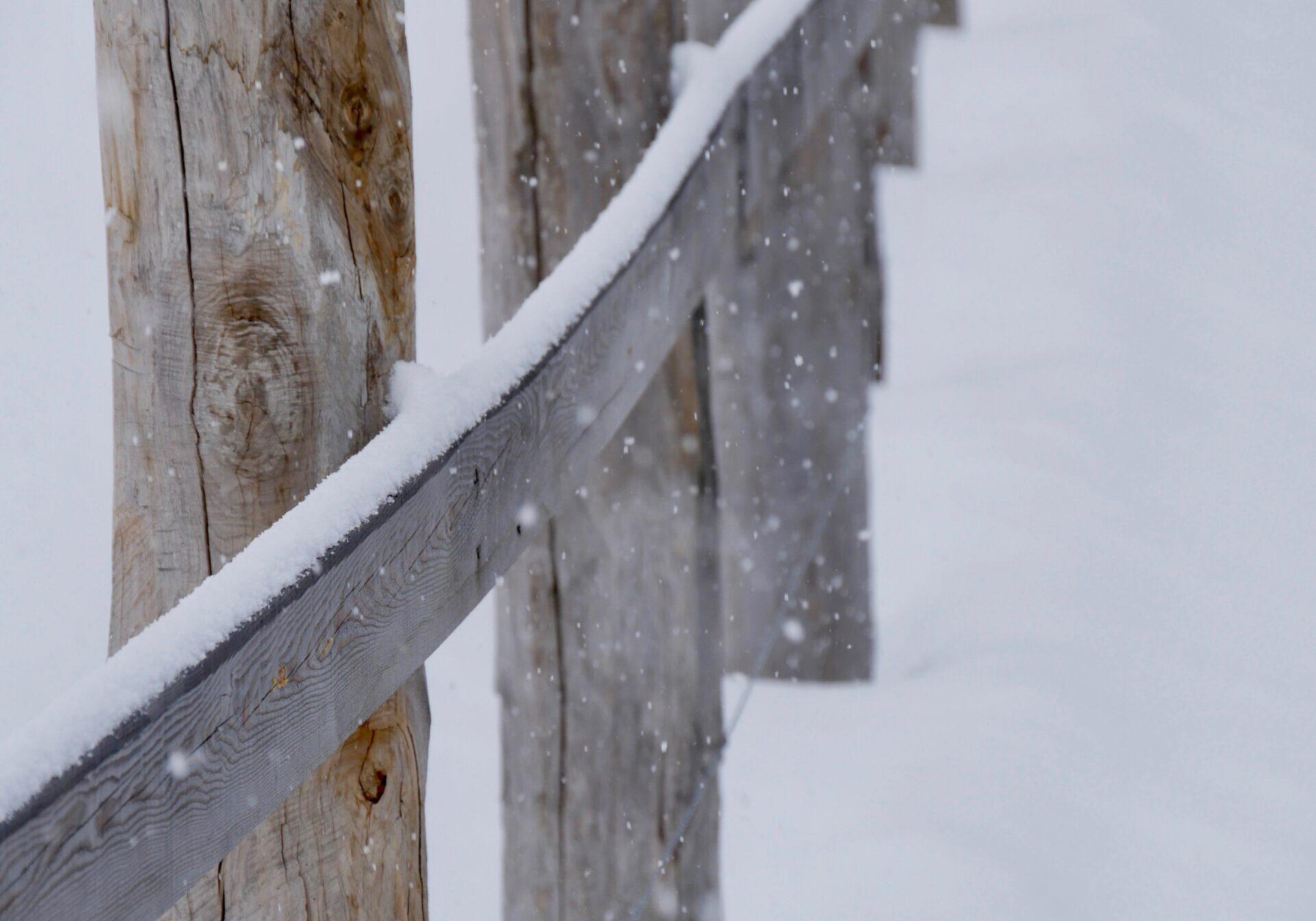Zaun verschneit, Schnee, Weihnacht, Karte, Grüsse